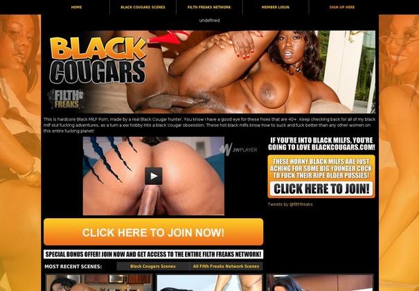 black cougars blackcougars.com