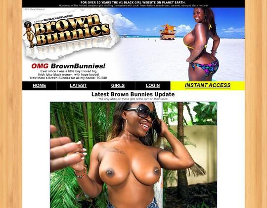brown bunnies brownbunnies.com