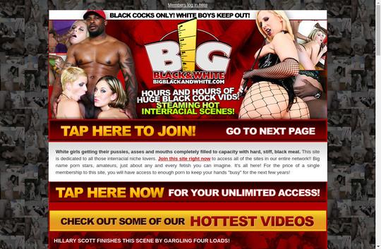 bigblackandwhite.com