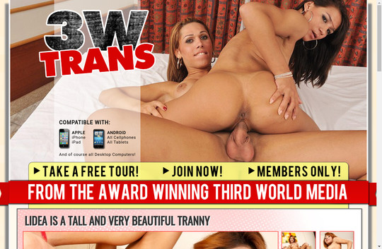 3wtrans.com