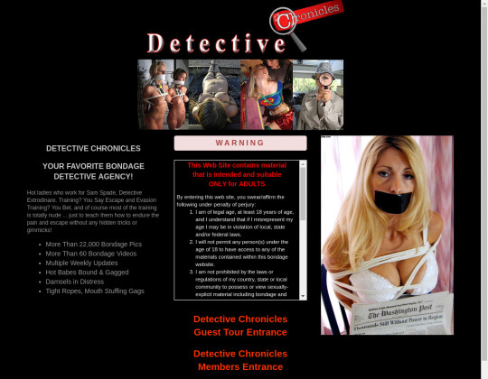 detectivechronicles.com
