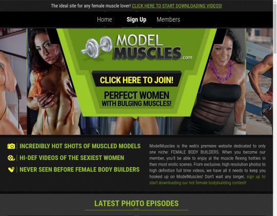 modelmuscles.com